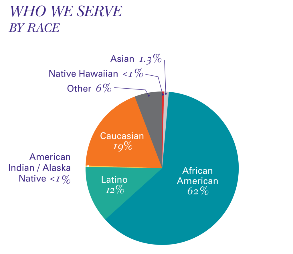 Pie chart showing who we serve by race